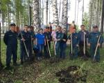 Пожарные 22 отряда  приняли участие во Всероссийском дне посадки леса